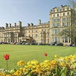 Royal York PH Hotels York