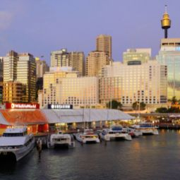 Darling Harbour Four Points by Sheraton Sydney Sydney (New South Wales)