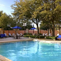 Piscina Sheraton Suites Market Center Dallas Fotos