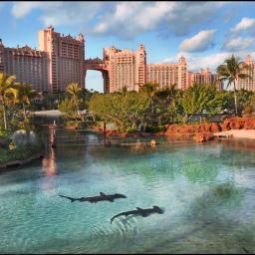 Photos des hôtels  Atlantis Paradise Island