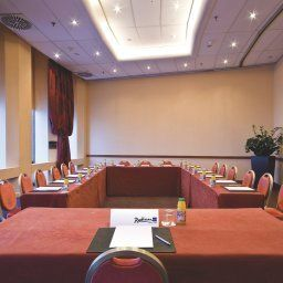 Conference room Lyon Radisson Blu Hotel Fotos