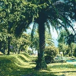 Jardin Leonardo da Vinci Prices All Inclusive Fotos