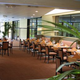 Ristorante Holiday Inn TOULOUSE AIRPORT Fotos