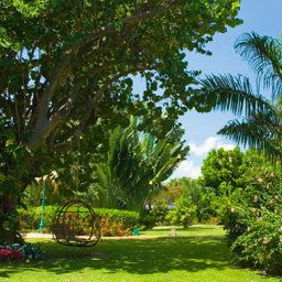 Sandals Montego Bay Jamaica Montego Bay