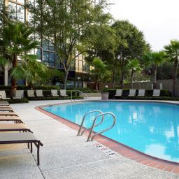 Piscina Sheraton Houston Brookhollow Hotel Fotos