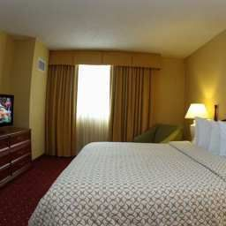 Room Embassy Suites Tampa  AirportWestshore Fotos
