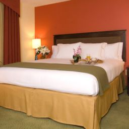 Room Holiday Inn Express Hotel & Suites GREENVILLE-I-85 & WOODRUFF RD Fotos