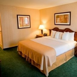 Suite Holiday Inn ARLINGTON AT BALLSTON Fotos