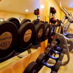 Wellness/Fitness DoubleTree by Hilton Wood Dale - Elk Grove Fotos