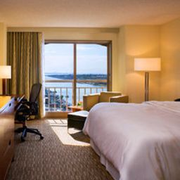 Zimmer The Westin Tampa Harbour Island Fotos
