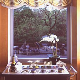 Central Park The Ritz-Carlton New York Fotos