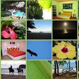 Certificato Totem Hotel Resort And Restaurant Fotos