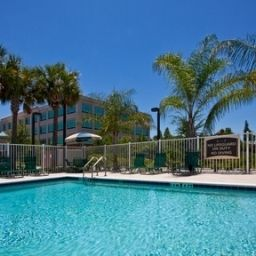Pool Staybridge Suites TAMPA EAST- BRANDON Fotos