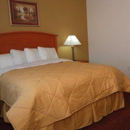 Habitacin Comfort Inn & Suites Chesapeake Fotos