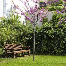 Jardin SG Costa Barcelona Business Apartements Fotos