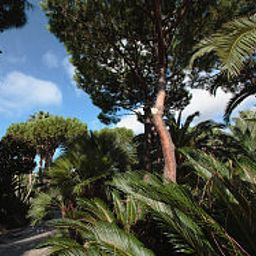 Jardn Park Hotel Terme Mediterraneo Fotos